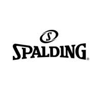 斯伯丁Spalding